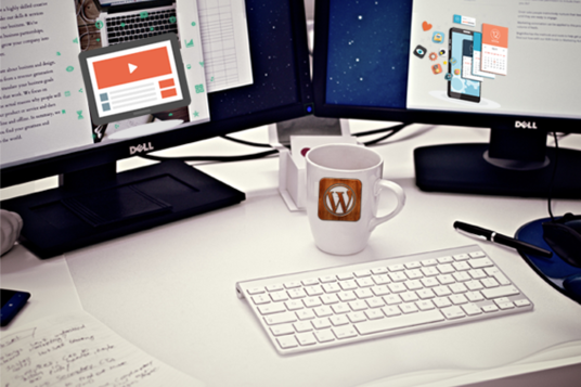 I will INSTALL & CUSTOMIZE any WordPress theme or template or framework