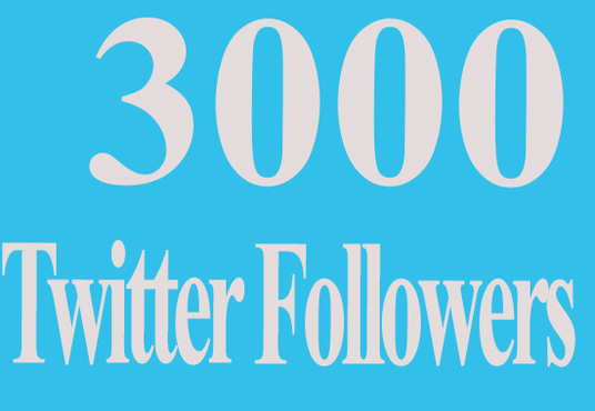 I will give you 3000 real twitter followers