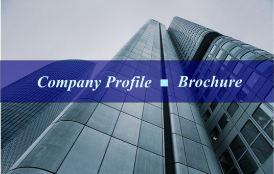 I will write exclusive company profile and brochure content