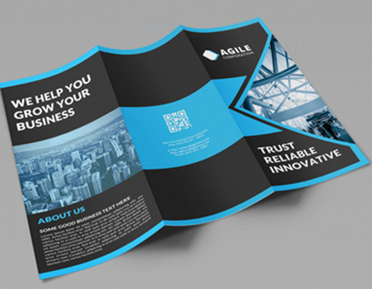 I will design professional brochure and flyer