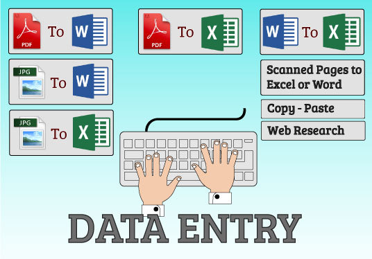 I will Professionally do  Data Entry Work