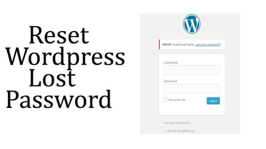 I will reset your Wordpress admin password
