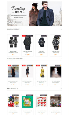 make an Affiliates Store Website for Amazon eBay Aliexpress and Evento Market