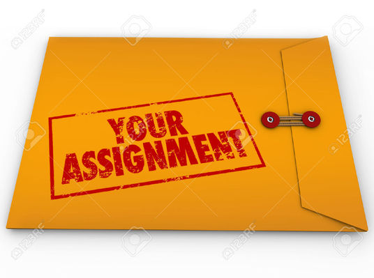 I will write assignments for you