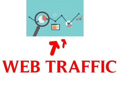 I will drive Genuine targeted Traffic for your website