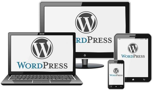I will Develop a professional WordPress Blog|Business|E-commerce website