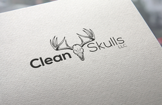 design your 5 company logo concepts with High Quality Mock ups (Limited Offer)