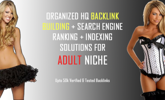 I will build 50,000+ adult niche backlinks and dripfeed daily