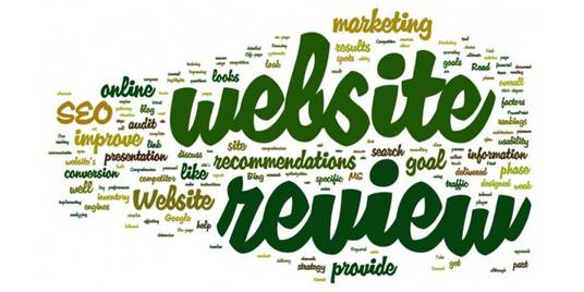 I will review your website