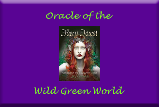 I will do a Faery Forest Oracle Card Psychic Reading