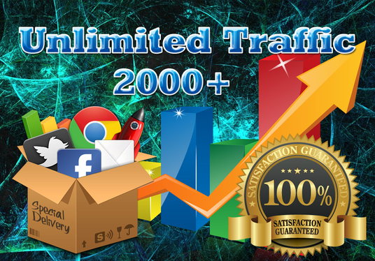 I will drive UNLIMITED Organic Website Traffic to your Website