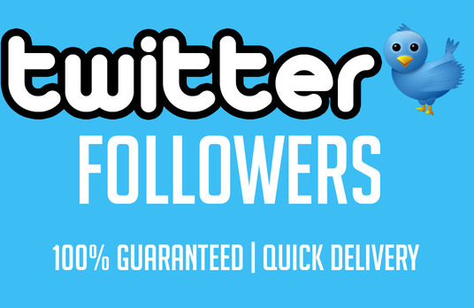 I will provide 1300+ Twitter Followers