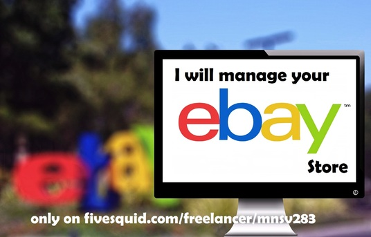 I will manage your eBay Store