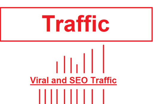 I will drive 30 days website traffic and visitor to your website