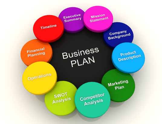 I will write an EXCELLENT business plan