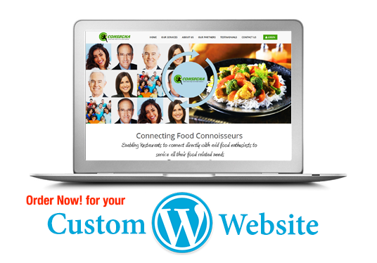I will design and install custom WordPress website