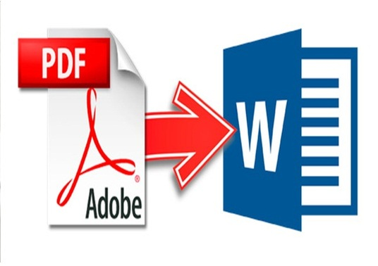I will manually Convert Your pdf doc to word format
