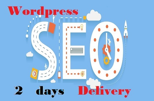 I will do WordPress SEO all stuff to your site