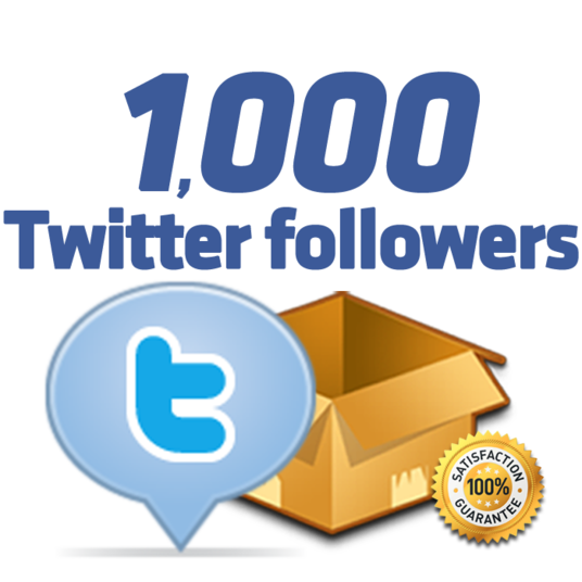 I will Provide 1000 Real PERMANENT twitter followers