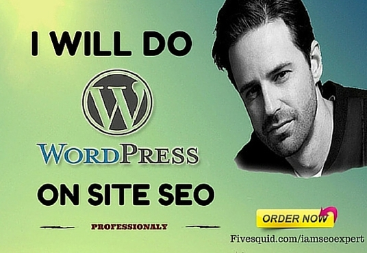 I will Do Professionally On Page SEO