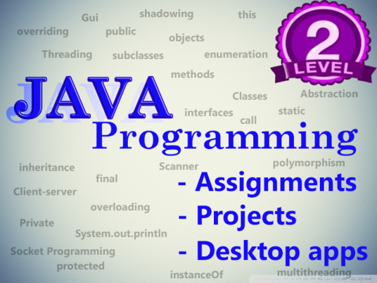 I will code your Java assignment and projects