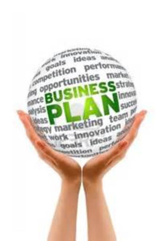 I will  write a Perfect OVERALL business plan