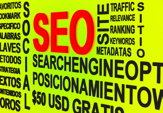 I will provide Primary Search Engine Optimization (SEO) for WordPress