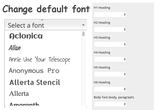 help you to Use any font in WordPress website