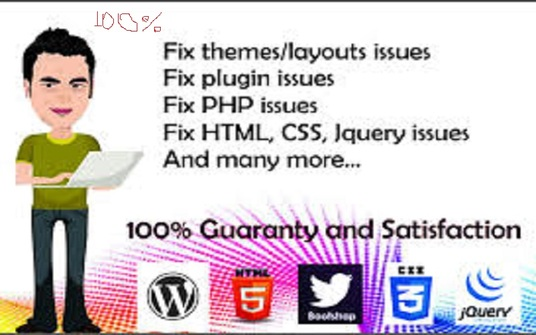 I will fix your any wordpress issues or wordpress errors in 24 hours