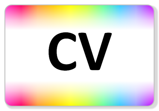 create a neatly formatted and typo-free CV