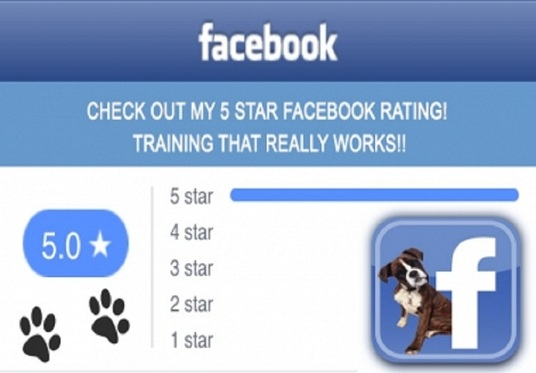 I will give you 100+ Real & Active Facebook 5-Star Ratings or Reviews on your Fan pages