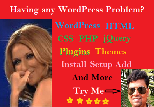 I will fix WordPress Error & CSS Issue