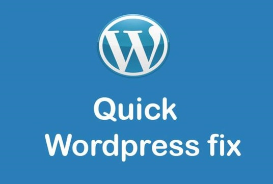 I will fix wordpress issues or wordpress errors in 24 hrs