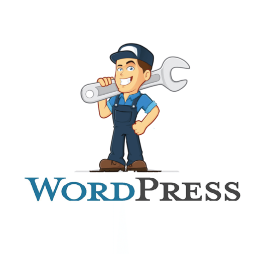 I will be your WordPress issue solver