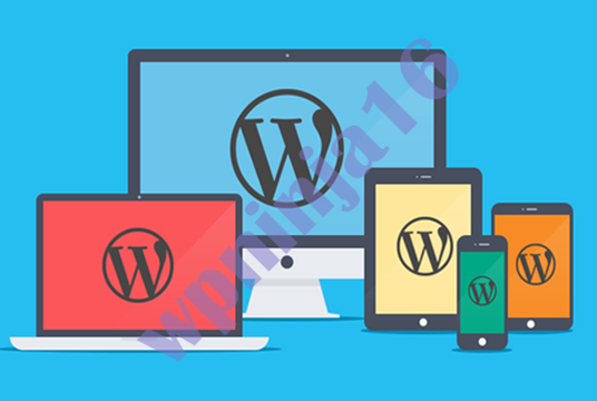I will create a Professional wordpress Website with Blog