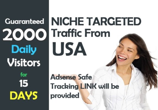 I will drive UNLIMITED visitors targeting usa to your website