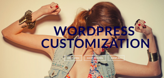 I will customize WordPress website like premium demo