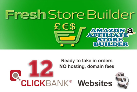 I will give 12 Money websites selling Clickbank products  (or FSB Amazon Affiliate Stores)