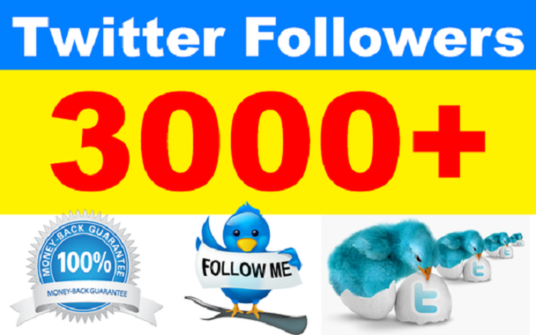 I will add 3000 Permanent Twitter Followers
