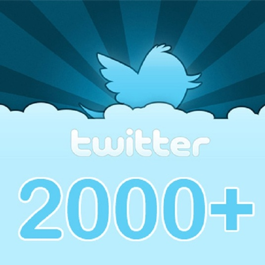 I will Provide you 2000 safe and Real twitter USA Followers