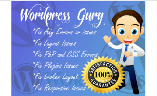 I will fix wordpress errors, wordpress issues