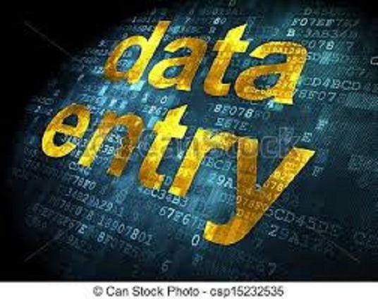 I will do any data entry job