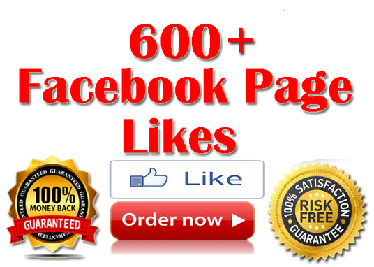 I will provide 600+ Real Facebook fan page likes (UK-USA) based