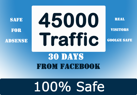 I will send 45000 Traffic real Human Visitors from Social Media
