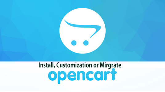 I will Fix any Opencart issue