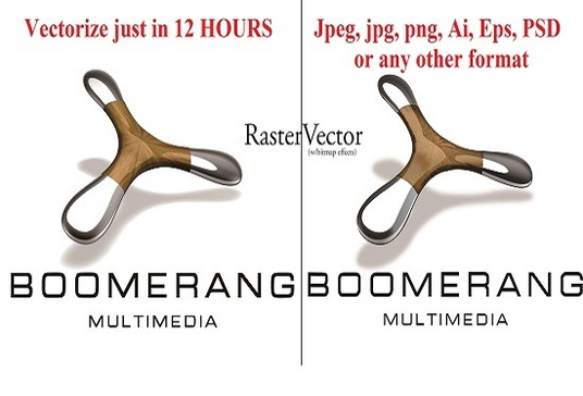 I will convert png,jpg,psd,pdf,logo,image to vector