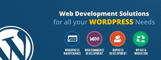 I will build Awesome Responsive WordPress Website for You. Build Auto Update Website - Blog - Wix
