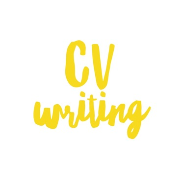 write a PROFESSIONAL CV