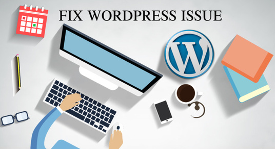 I will Fix WordPress Issue or Answer Question