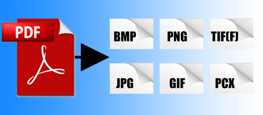 I will convert your PDF document to an image